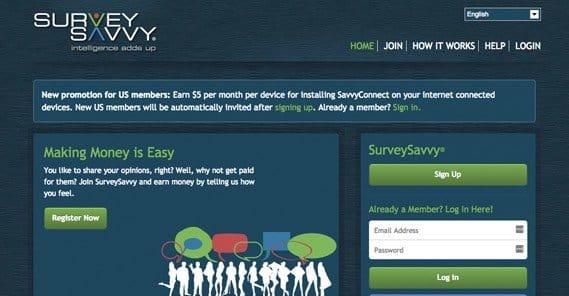 Survey Savvy Example Site