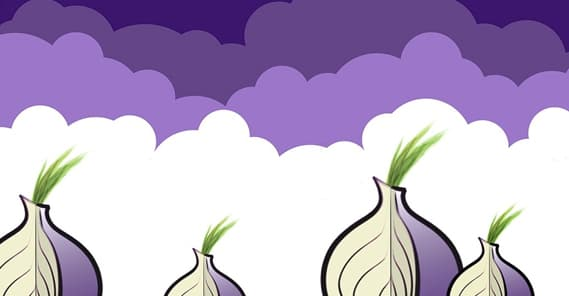 Tor Illustration