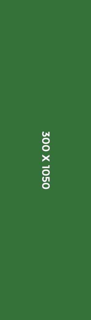 300 x 1050