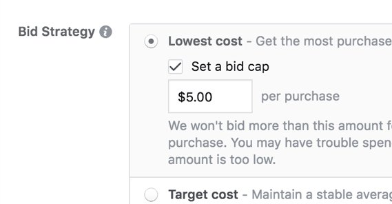 Facebook Bid Cap
